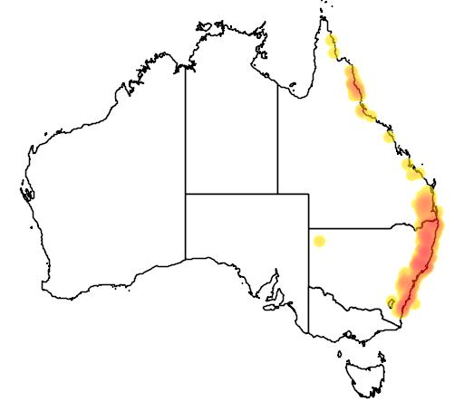 distribution map showing range of Dockrillia teretifolia in Australia