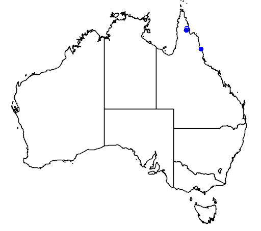 distribution map showing range of Dockrillia wassellii in Australia
