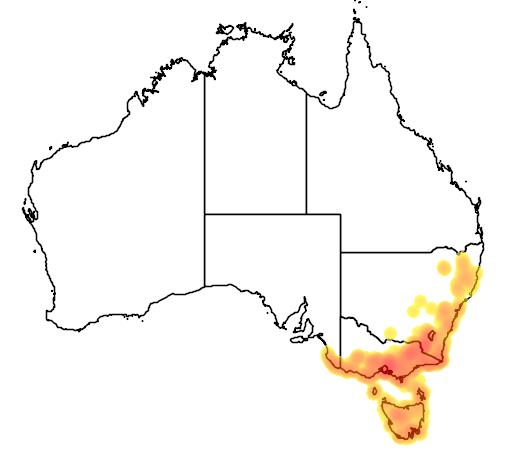 distribution map showing range of Drysdalia coronoides in Australia