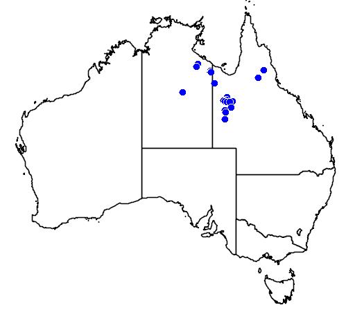 distribution map showing range of Egernia hosmeri in Australia