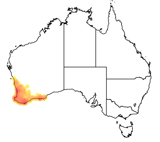 distribution map showing range of Elythranthera brunonis in Australia