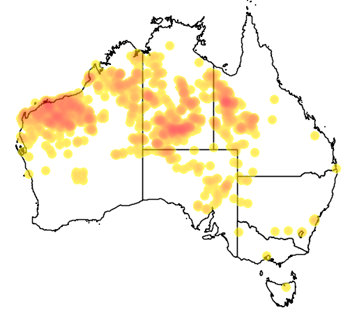 distribution map showing range of Emblema pictum in Australia
