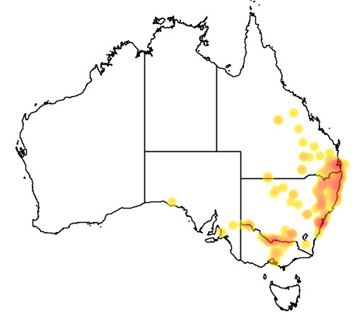distribution map showing range of Emydura signata in Australia