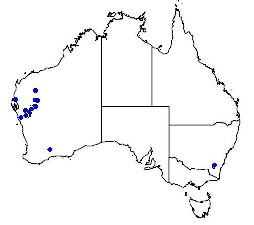 distribution map showing range of Eremophila laanii in Australia
