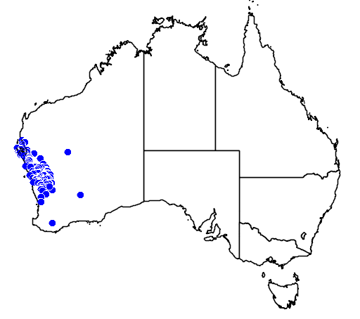 distribution map showing range of Eremophila oldfieldii in Australia