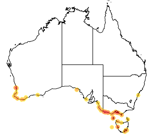 distribution map showing range of Eudyptes chrysocome in Australia
