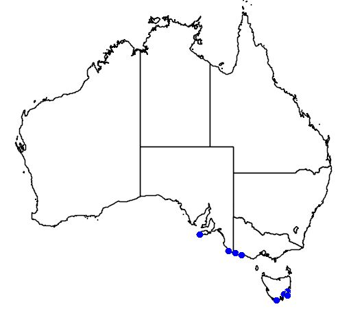 distribution map showing range of Eudyptes robustus in Australia