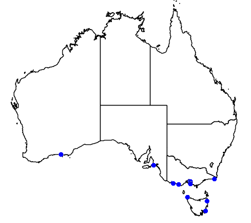 distribution map showing range of Eudyptes sclateri in Australia
