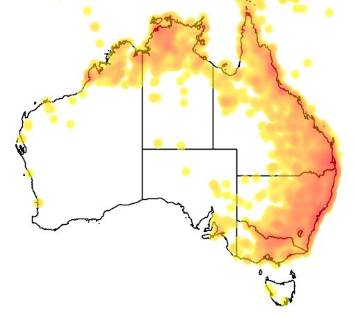 distribution map showing range of Eurystomus orientalis in Australia