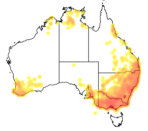 distribution map showing range of Falcunculus frontatus in Australia