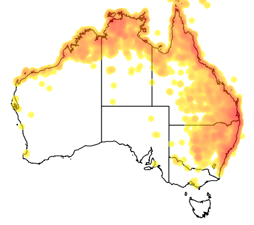 distribution map showing range of Geopelia humeralis in Australia