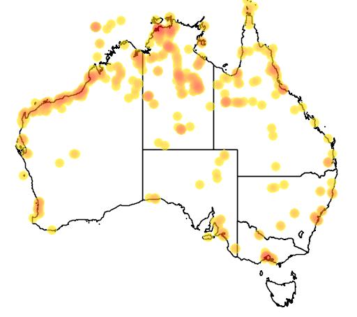 distribution map showing range of Glareola maldivarum in Australia