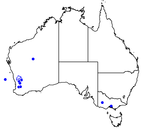distribution map showing range of Grevillea armigera in Australia