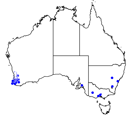 distribution map showing range of Grevillea bipinnatifida in Australia