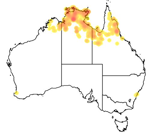 distribution map showing range of Grevillea dryandri in Australia