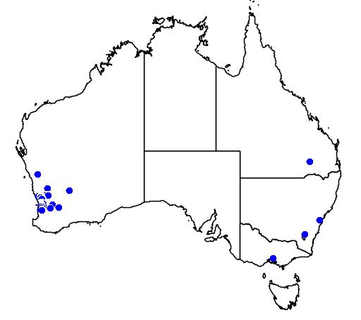 distribution map showing range of Grevillea endlicheriana in Australia