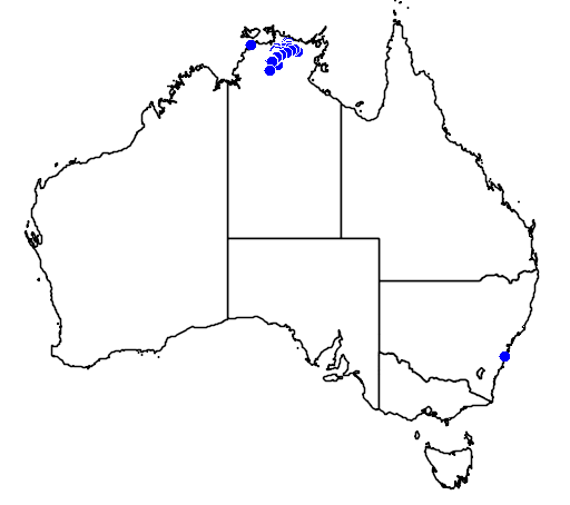 distribution map showing range of Grevillea formosa in Australia