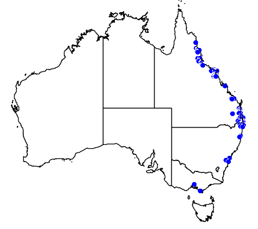 distribution map showing range of Grevillea hilliana in Australia