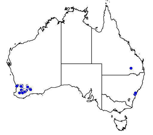 distribution map showing range of Grevillea insignis in Australia