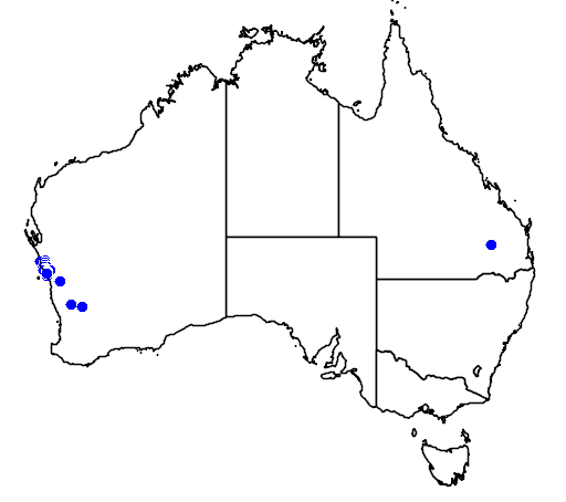 distribution map showing range of Grevillea intricata in Australia