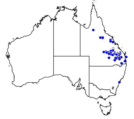 distribution map showing range of Grevillea longistyla in Australia