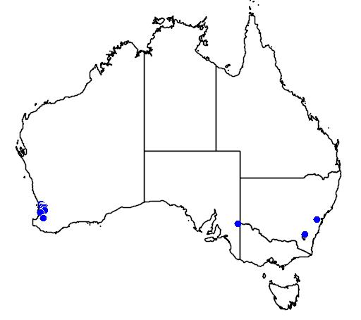 distribution map showing range of Grevillea manglesii in Australia