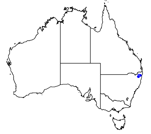 distribution map showing range of Grevillea mollis in Australia
