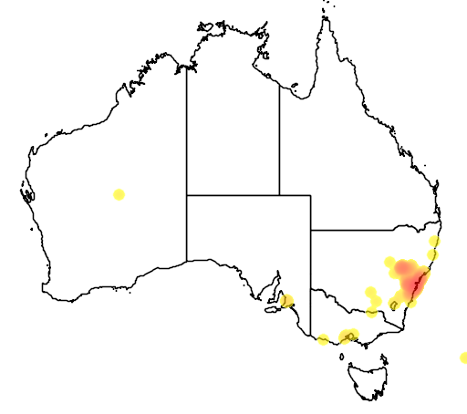 distribution map showing range of Grevillea sericea in Australia
