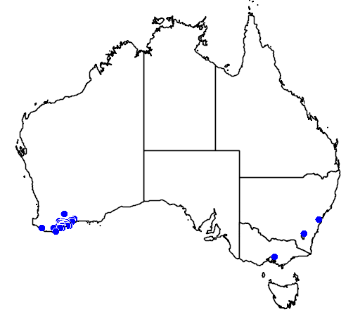 distribution map showing range of Grevillea tetragonoloba in Australia
