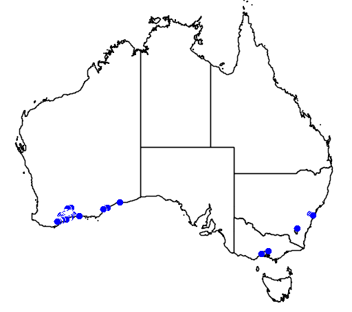 distribution map showing range of Grevillea tripartita in Australia