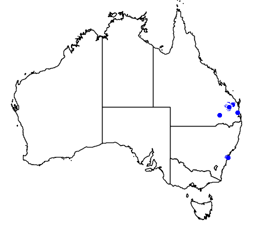 distribution map showing range of Grevillea whiteana in Australia