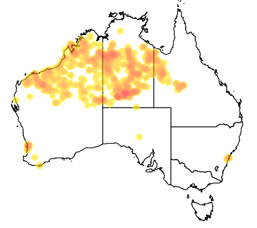 distribution map showing range of Grevillea wickhamii in Australia