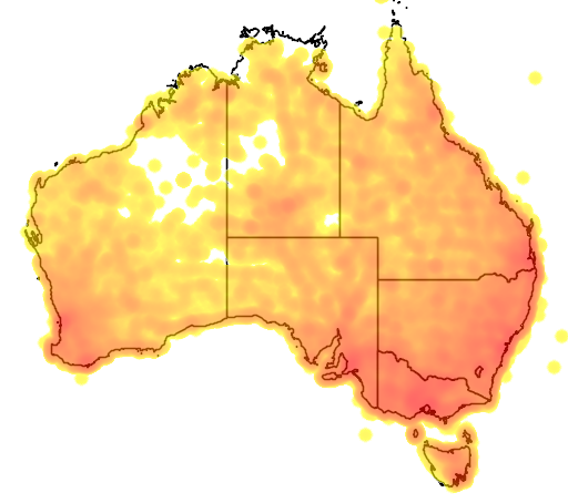distribution map showing range of Gymnorhina tibicen in Australia