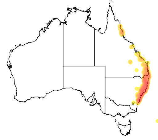 distribution map showing range of Gymnostachys anceps in Australia