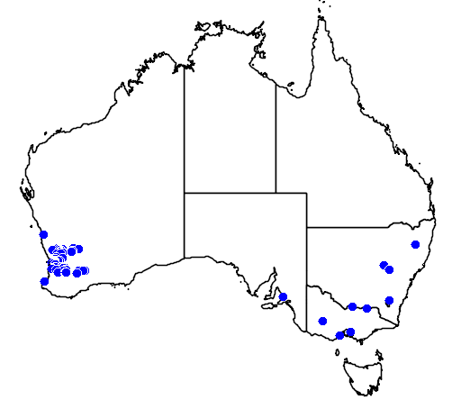 distribution map showing range of Hakea petiolaris in Australia