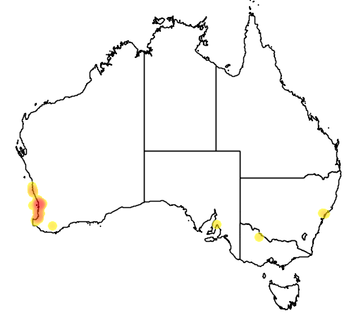 distribution map showing range of Hemiergis quadrilineata in Australia