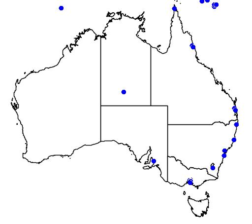 distribution map showing range of Hirundo tahitica in Australia