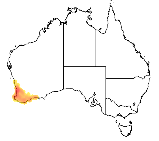 distribution map showing range of Jacksonia furcellata in Australia