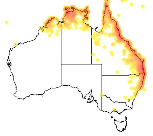 distribution map showing range of Lalage leucomela in Australia