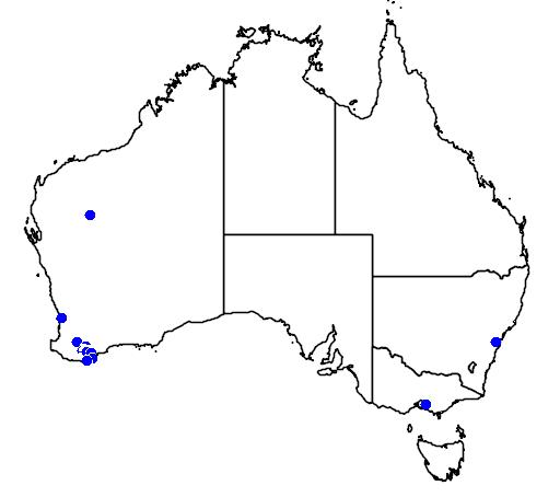 distribution map showing range of Lambertia ericifolia in Australia