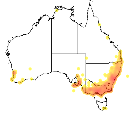 distribution map showing range of Lampropholis guichenoti in Australia
