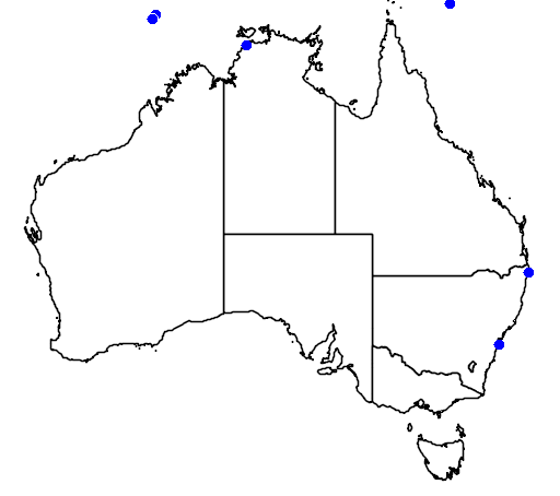 distribution map showing range of Laticauda colubrina in Australia