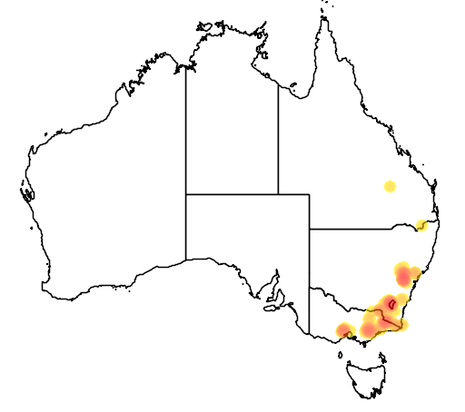 distribution map showing range of Leionema lamprophyllum in Australia