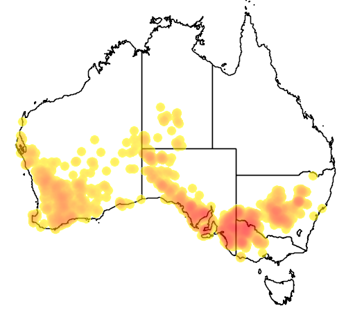 distribution map showing range of Leipoa ocellata in Australia
