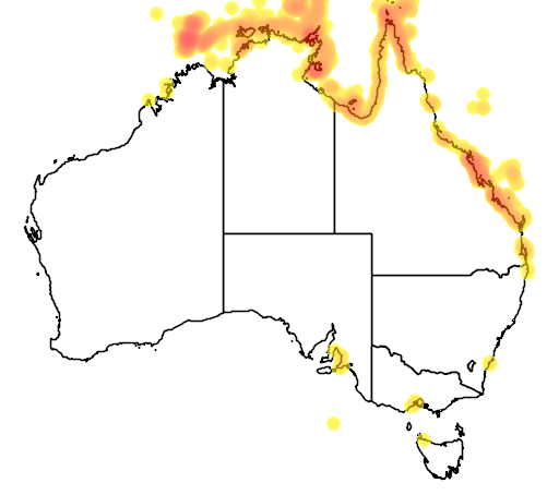 distribution map showing range of Lepidochelys olivacea in Australia