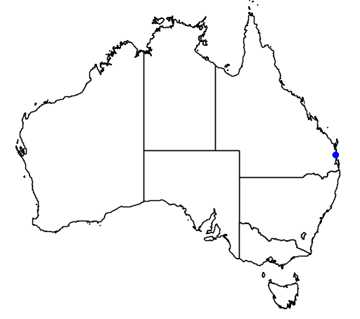 distribution map showing range of Lepidorrhachis mooreana in Australia