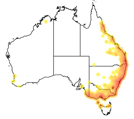 distribution map showing range of Limnodynastes peroni in Australia