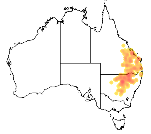 distribution map showing range of Limnodynastes salmini in Australia