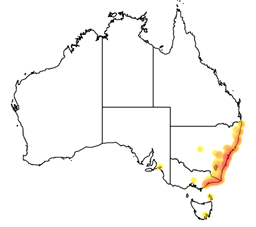 distribution map showing range of Litoria aurea in Australia