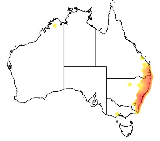 distribution map showing range of Litoria dentata in Australia